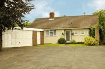 Semi-Detached Bungalow to rent in Oldbury