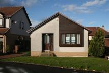 3 bed Bungalow to rent in Fereneze Grove...