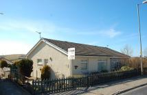 Semi-Detached Bungalow for sale in 63 Kirkoswald Road...