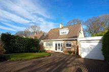 3 bed Detached property in Pemberton Valley...