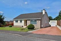 Detached Bungalow for sale in Carrick View, Coylton...