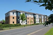 Flat for sale in Shawfarm Gardens...