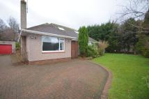 5 bed Detached home to rent in Wilson Avenue, TROON...
