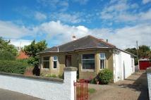 Detached Bungalow in Chalmers Road, Ayr