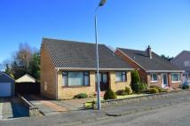 Detached Bungalow in Sunningdale Avenue, Ayr