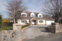 Detached Bungalow in St. George Road, Abergele