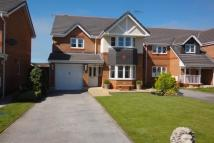 4 bedroom Detached house in Rhos Fawr, Belgrano...