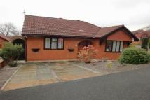 Lon Dderwen Detached Bungalow for sale