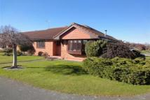 Detached Bungalow for sale in Maes Cybi, Pensarn...
