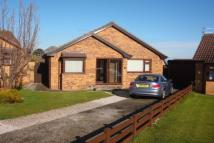 3 bed Detached Bungalow for sale in Bryn Rhosyn, Abergele
