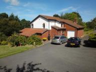 4 bed Detached house for sale in Brynhyfryd Grove...