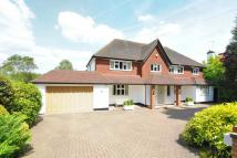 5 bed Detached house in Moor Park, WD3