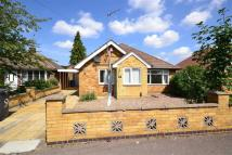 3 bed Detached Bungalow in Fernie Close...