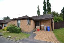 Detached Bungalow for sale in Knibb Place...