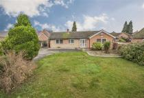 4 bedroom Detached Bungalow in Finedon Road...