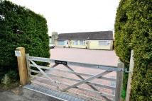 3 bedroom Detached Bungalow for sale in Irthlingborough Road...