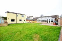 Detached Bungalow for sale in Irthlingborough Road...