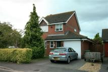 Detached house to rent in Astral Gardens, Hamble...