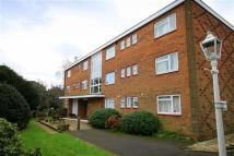 River Green Flat to rent