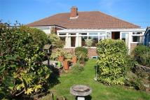 Bungalow to rent in Sellwood Road...