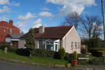 Hollinberry Detached Bungalow for sale