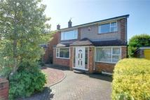 Detached property to rent in Bamburgh Road, Durham...