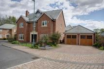 Detached property to rent in Westhouse Avenue...