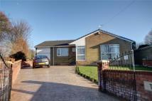 3 bedroom Bungalow in Bellsfield, West Rainton...
