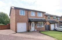 5 bed Detached property for sale in Pettersondale, Coxhoe...