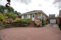 Bungalow for sale in Browning Hill, Coxhoe...