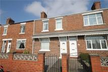 3 bedroom Terraced property to rent in MAUDE TERRACE...