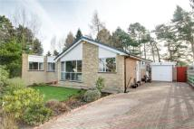 4 bed Bungalow for sale in The Paddock, Lanchester...