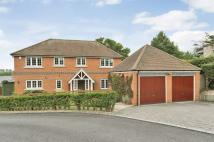 5 bed house in Speen Lane, Newbury...