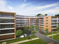 Racecourse Road Apartment to rent