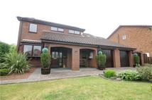Detached home for sale in Stag Lane, Woodham...