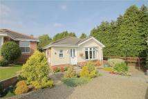2 bed Detached Bungalow for sale in Cowdray Close...