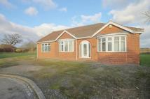 4 bedroom Bungalow in Desmond Road...