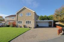 Detached property for sale in Emerson Road, Hurworth...