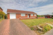 Bungalow for sale in Hickstead Rise...