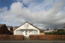 2 bed Bungalow in Northumberland Avenue...