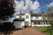 4 bedroom semi detached house for sale in Dene Hall Drive...