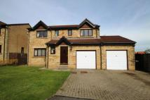 Detached property for sale in The Birches, Shield Row...