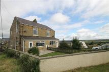 Bolams Buildings semi detached property for sale