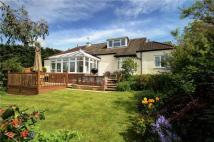 Bungalow for sale in Northside, Birtley...