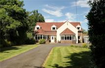4 bed Detached home in North Lodge...