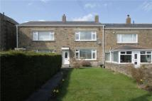 3 bed Terraced house in Iveston Lane, Iveston...
