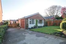 Bungalow for sale in Alderside Crescent...