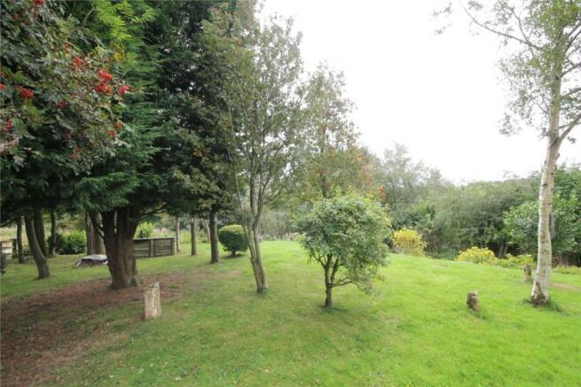 Far Rear Garden