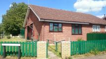 Bungalow to rent in Barsham Drive...