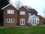 5 bedroom house to rent in South Warnborough...